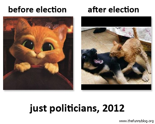 election-2012-courtesy-the-funny-blog-dot-org.jpg